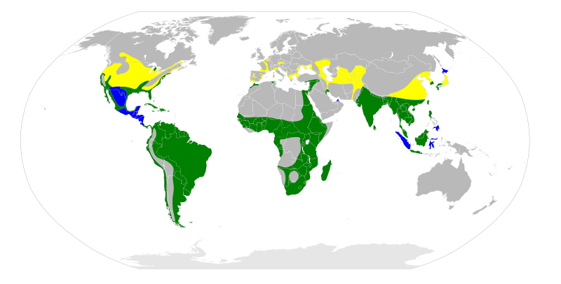 800px-Nycticorax_nycticorax_map.svg.png